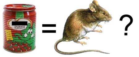 extrato_rato.jpg