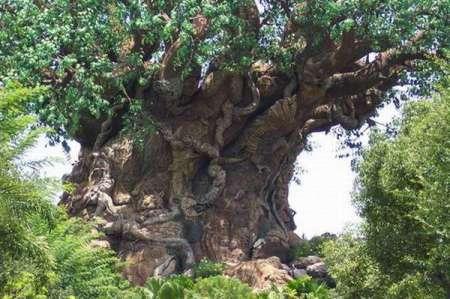 carved_tree-006.jpg